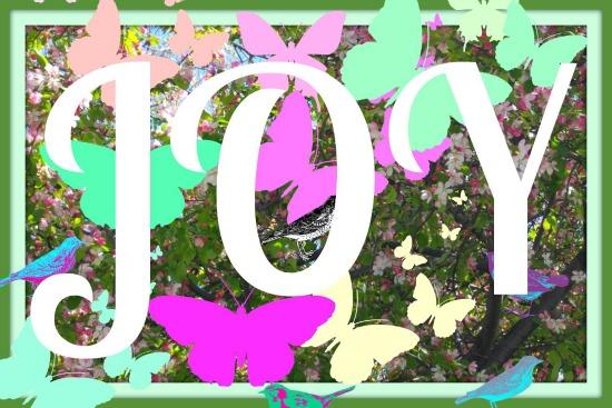 Joy 6292 550